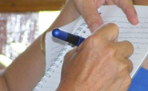 Schrijven, invalshoek taal, Da Capo Coaching