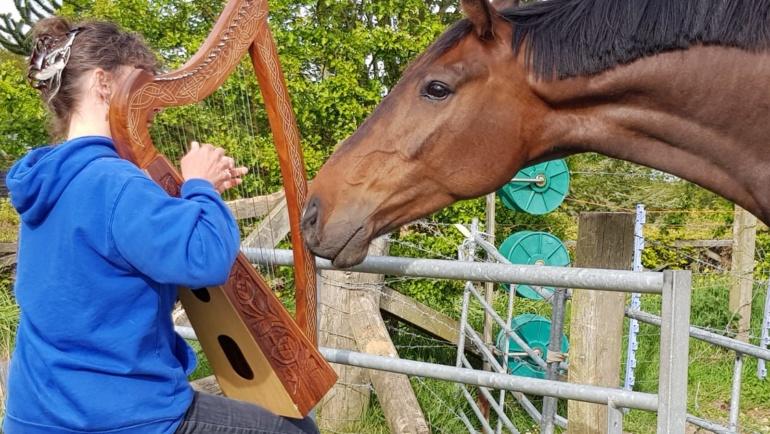 Het effect van muziek op dieren. Da Capo Coaching.
